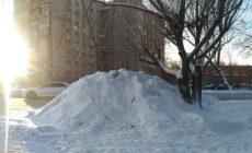 Теперь омичи смогут сдать бесплатно убранный у дома снег